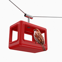 Bird feeder - cable car