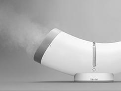 Shofar humidifier
