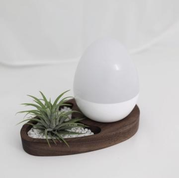 Smart IoT alarm EGG 'MOGG'